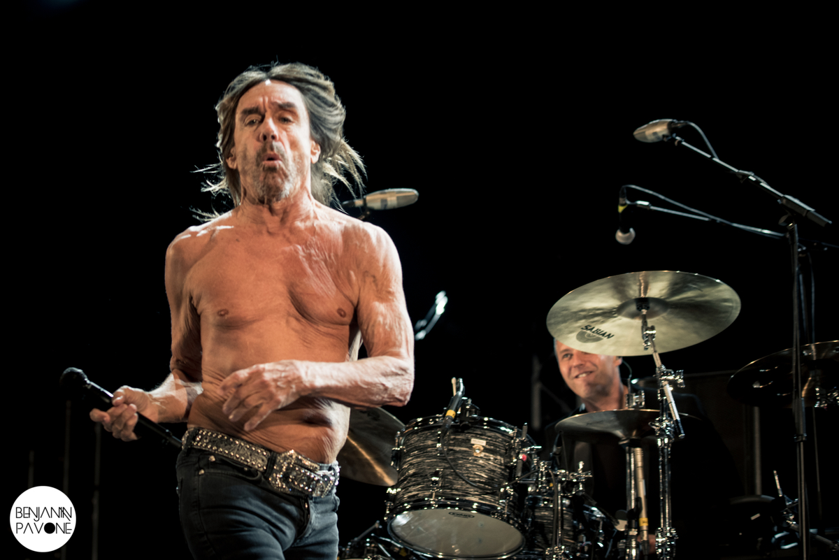 Festival Ecaussystème 2016 iggy-pop-and-the-stooges