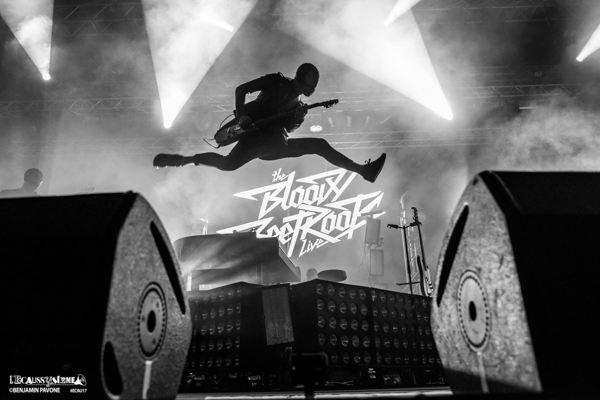 Ecaussysteme 2017 the-bloody-beetroots